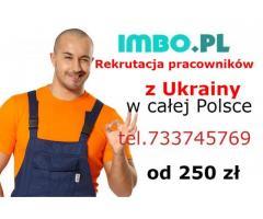 Rekrutacja Ukrainskich pracownikow imbo pl